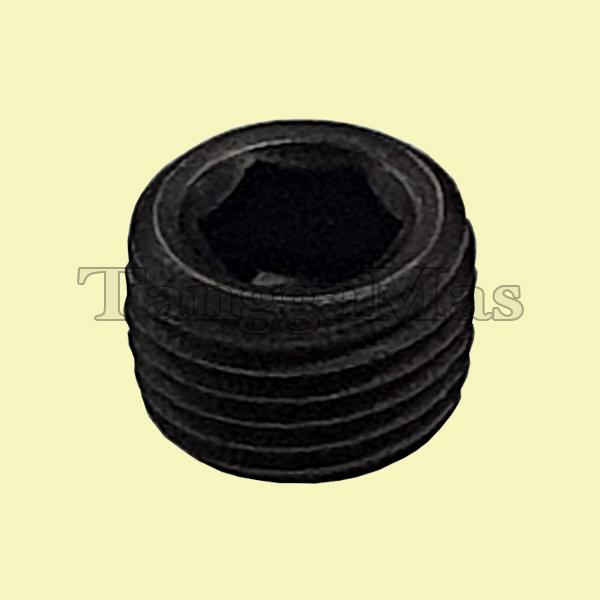 "Pipe Plug Aro 1 Inch series 1/8 - 27 NPT x 1/4"" Type 666...   Part Number Y227-2-L"