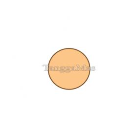 Plate Fluid Side Graco DCO 25 KT 1 Inch | 819-4385